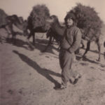 soldier with camels