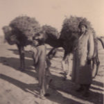 soldiers with camels